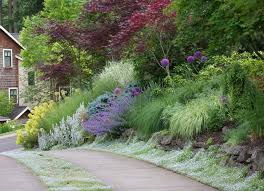 grass driveways landscape traditional with deer garden cottage
