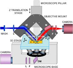 Inverted Living Inverted Selective Plane Illumination Microscopy Ispim Enables