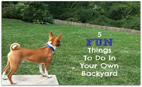 5 fun things to do in your own backyard the good mama