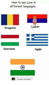 Different Languages Meme - how to say love in different languages ljubav dragoste szerelem ok