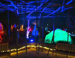 Glow Botanical Gardens Santa Fe Countdown To New Year S Barker Realty