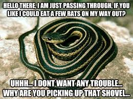 Shovel Meme - 31 most funny snake meme pictures and images
