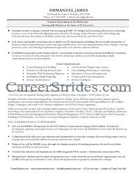cover letter bullet point sample sample resume bi professional 500