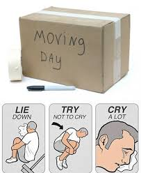 Moving Memes - for many moving day is pretty rough we joke about it alot in the
