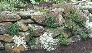 Rock Garden Wall Napa Wall Rock Garden
