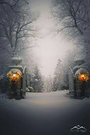 Winter Lane Light Flurries by 319 Best Winter Images On Pinterest Landscapes Snow And Cozy