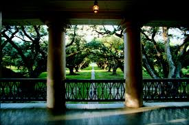 area information oak alley plantation