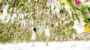 Cut Flower Garden by 2 300 Floating Flowers Interactive Garden Makes Way As You Walk