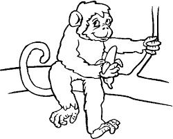 dessins de singe à colorier