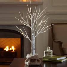 apothecary 2 foot birch pre lit tree jcpenney