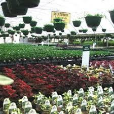 Landscape Nurseries Near Me by Greenway Nursery U0026 Landscaping Nurseries U0026 Gardening 15474 S