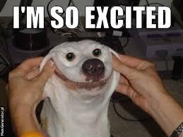 So Excited Meme - image i m so excited dog face jpeg walking dead wiki