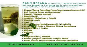 Teh Rerama teh kanser daun rerama manfaat teh kanser daun herba rerama sri ayu