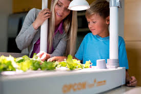 harvest fresh veggies all year round with the energy efficient