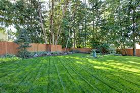 Hydroseeding A Lawn Landscaping Network - Landscape designs for large backyards