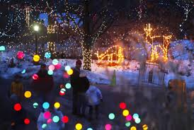 christmas lights at the zoo indianapolis christmas at the indianapolis zoo my indiana pinterest zoos