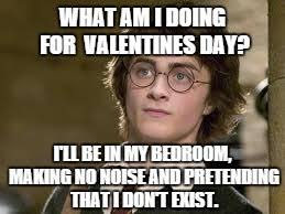 Valentines Day Memes Single - what am i doing for valentines day i ll be in my bedroom making