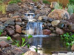 backyard ponds waterfalls pictures back yard koi pond and