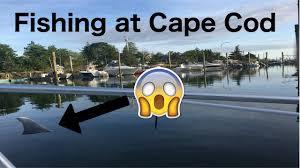 fishing trip at cape cod massachusetts youtube