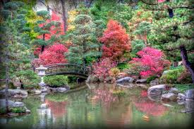 Botanical Gardens In Illinois Japanese Botanical Garden Freezeframefoto
