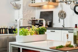 100 indoor garden diy indoor garden gardening ideas diy