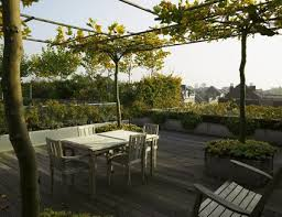 Garden Roof Ideas What To Consider Before Planting A Rooftop Garden