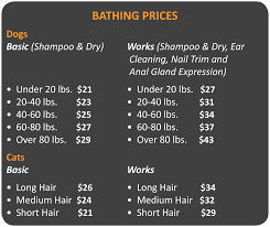 how much is average price for hair cut and color bathing grooming cityvet