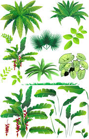 cartoon jungle tree