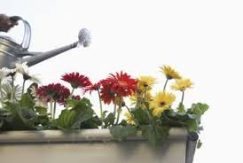 How To Make Self Watering Planters by How To Make Your Own Self Watering Flower Gardens Home Guides