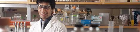 Sample Resume Objectives For Biology Majors by Biochemistry And Molecular Biology Major Uc Davis