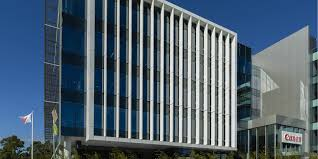 eco activities in sydney sydney eco friendly office with 5 star green star action for green