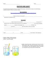 medicaltermsstudentworksheet medical terminology worksheet c