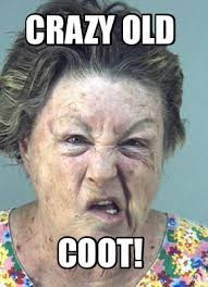 meme maker cranky old woman generator