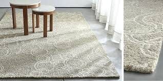 Crate And Barrel Outdoor Rug Crate Barrel Outdoor Rugs Rugs Design