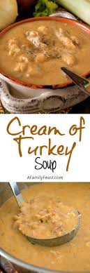 best 25 turkey soup ideas on leftover turkey soup