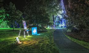 holiday light shows glow with seasonal cheer