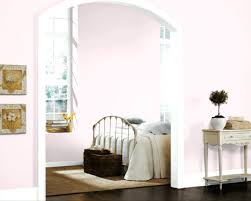 baby pink paint color u2013 alternatux com
