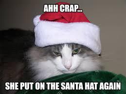 Hat Meme - poor cat santa elf hat funny meme binxzay