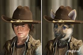 Carl Grimes Halloween Costume Dogster Presents Dogs