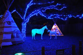 zoo lights houston 2017 dates zoo lights at the houston zoo join bayou city outdoors houston s