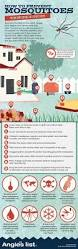 best 25 prevent mosquito bites ideas on pinterest misquito bite