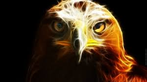desktop mexican eagle pictures