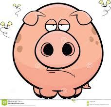 cartoon pig grumpy stock vector image 42222249
