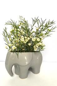 chive grey elephant planter from new york city by saint seneca
