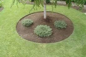 garden design garden design with easy landscape edging