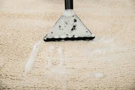 How Do You Get The Urine Smell Out Of Carpet Cleaning Urine Odors From Carpet Thriftyfun
