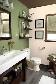 Light Green Bathroom Ideas 1000 Ideas About Green Bathrooms On Pinterest Bold And Modern