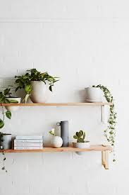 best 25 plant shelves ideas on plant wall indoor