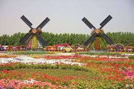Largest Botanical Garden by Miracle Garden In Dubai U2013 World U0027s Largest Botanical Garden Nina