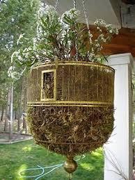 Gardening Ideas Pinterest Pinterest Gardens Ideas Captivating Interior Design Ideas